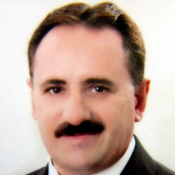 Ademir Paulino Ferrari